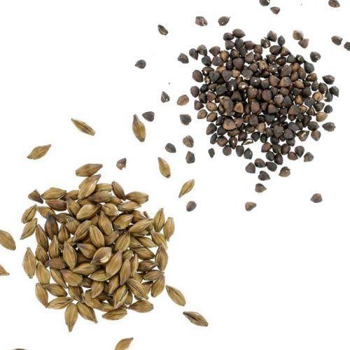 Coffret de céréales torréfiées Orge et Sarrasin