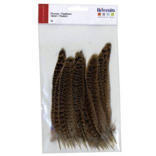 24 plumas naturales 14 cm