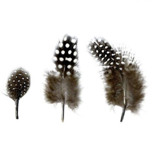Natural feathers 2 to 6 cm - 3 g