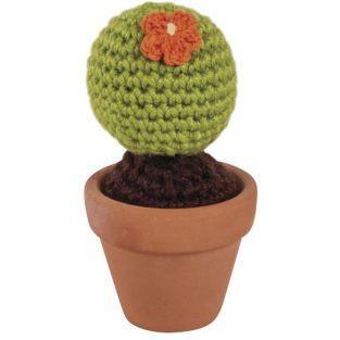 Kit Cactus bola Ø 4,5 cm x 9 cm