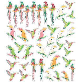 40 formes découpées - Oiseaux tropicaux