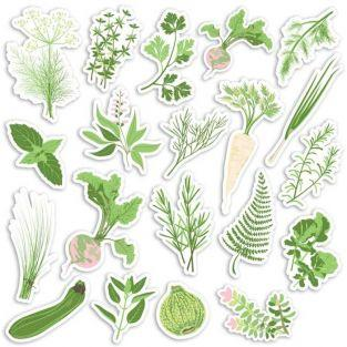 20 Die-cuts - Vegetable garden