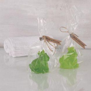 DIY soap box - Frog King