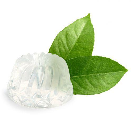 Savon à mouler 100 g - Translucide
