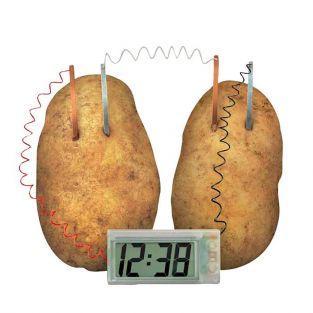 Juego educativo científico - Reloj de patata