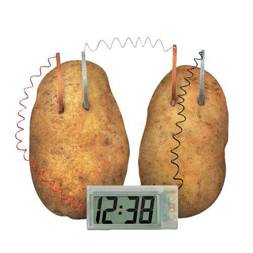 Coffret découverte de la science - Patat'Horloge