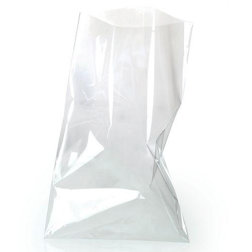 10 transparent food bags 23 x 14 cm