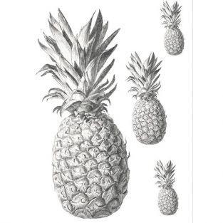 Transfert thermocollant noir & blanc A4 - Ananas