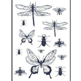 Transfert thermocollant noir & blanc - Insectes