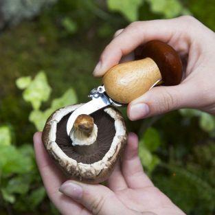 Outil à champignons