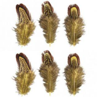 6 plumas decorativas - amarillo