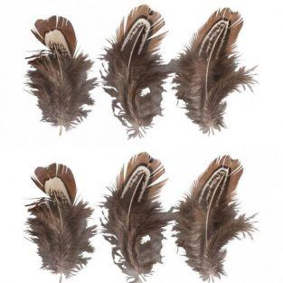6 decorative feathers - Brown